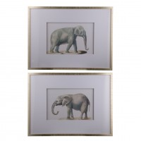 Framed Elephant Pencil Drawings, Set of Two